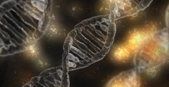 Emerging Gene-Targeting Therapies for SOD1-ALS